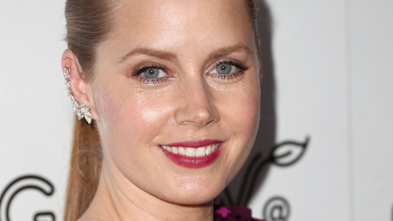 Amy Adams in Talks to Star in The True American Drama