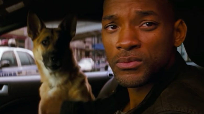 Scene from I Am Legend