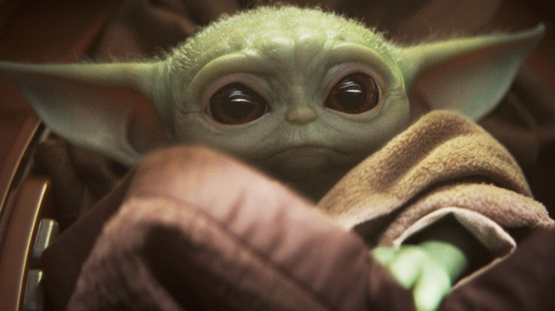 Image result for yoda like