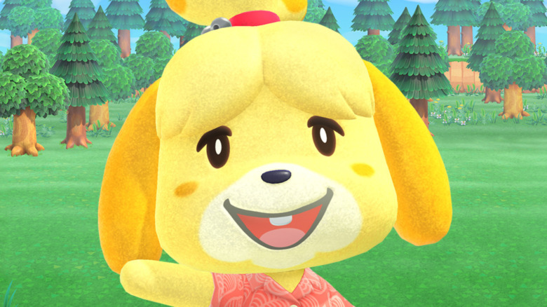 Isabelle New Horizons