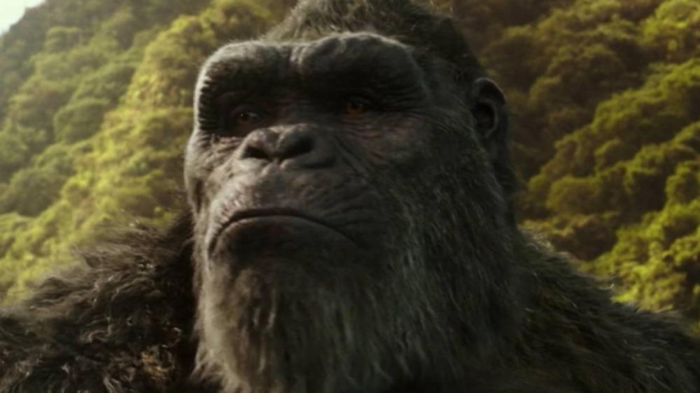 King Kong waking up