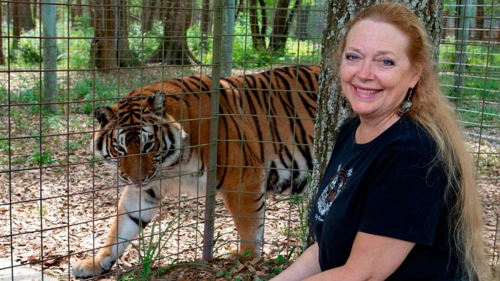 Carole Baskin and tiger from Tiger King