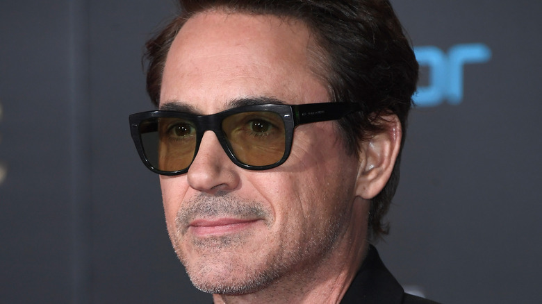 Robert Downey Jr From Dropout To Iron Man