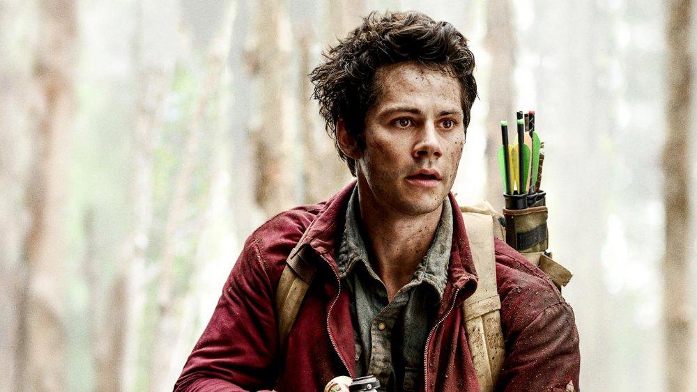Joel with arrows