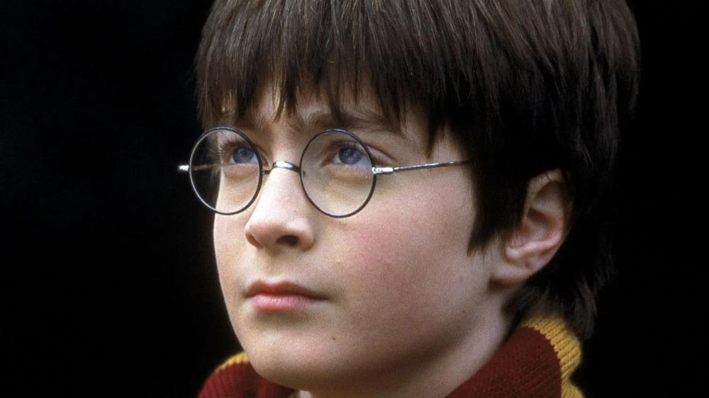 Harry Potter glasses Gryffindor scarf