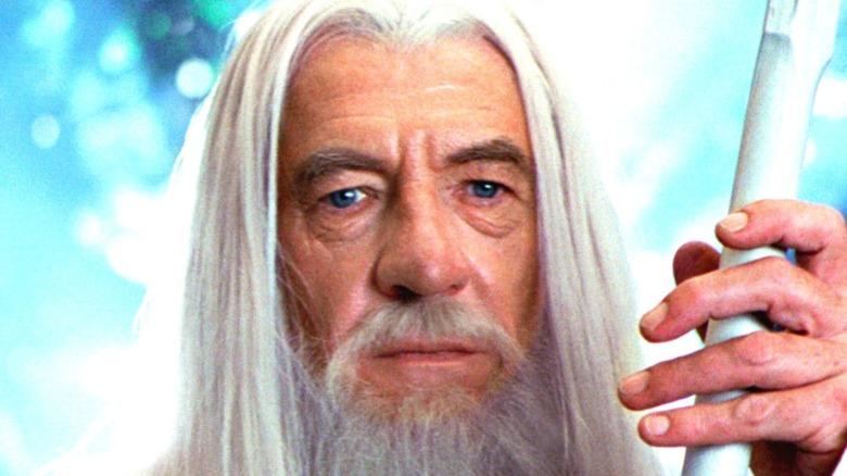 Ian McKellen as Gandalf in Lord of the Rings
