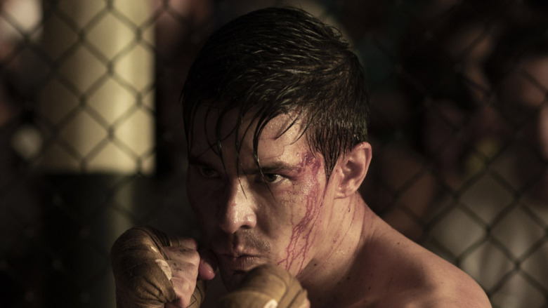 Cole Young fighting
