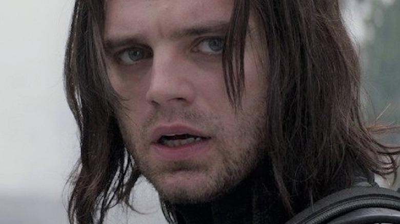 Sebastian Stan as the Winter Soldier
