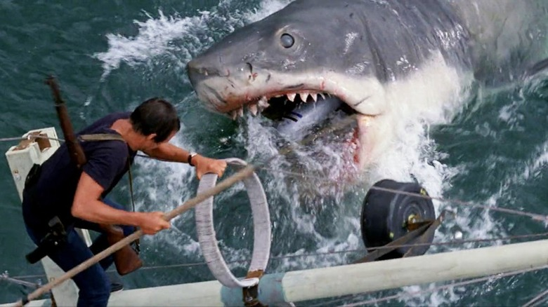 Scene from Jaws