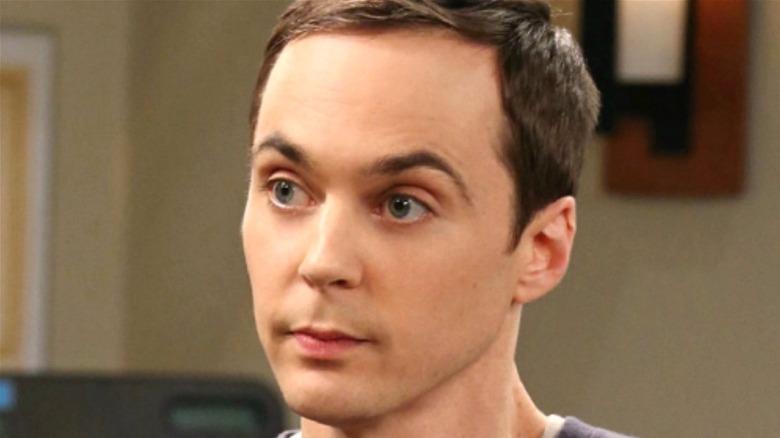 Jim Parsons, Big Bang Theory