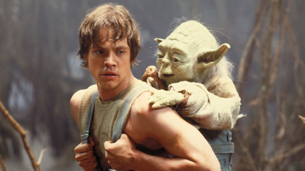 Yoda and Luke Skywalker training