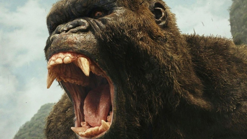 kong roaring
