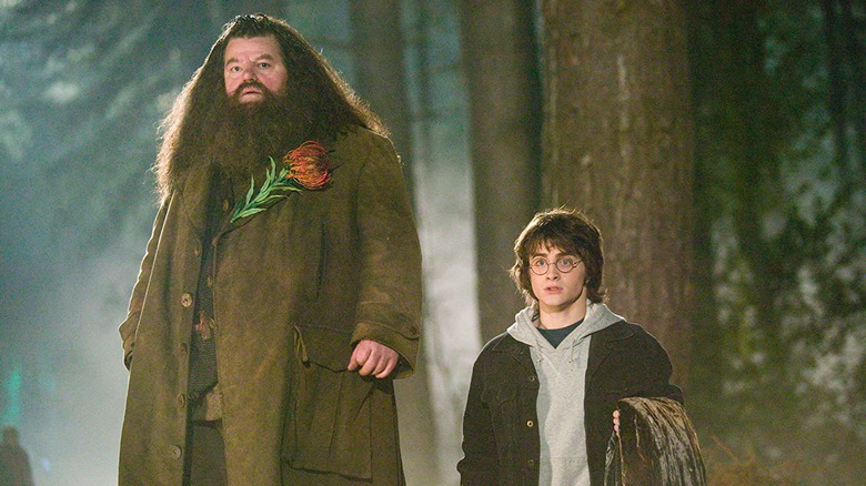 Robbie Coltrane and Daniel Radcliffe in Harry Potter