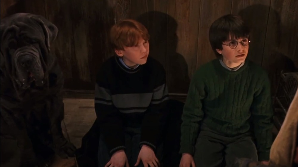 Harry Potter and Ron Weasely looking quizzical