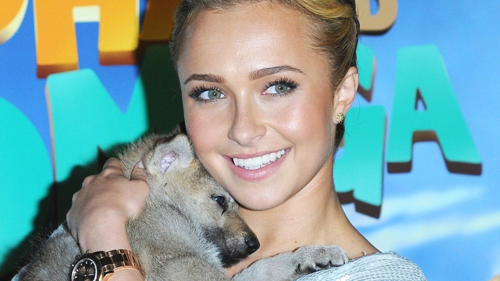 Hayden Panettiere holding a wolf
