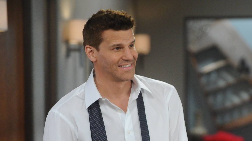 David Boreanaz as Agent Seeley Booth