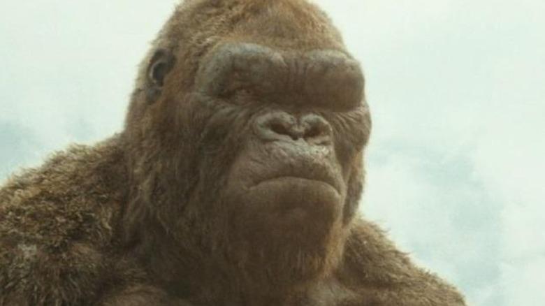 King Kong frowning