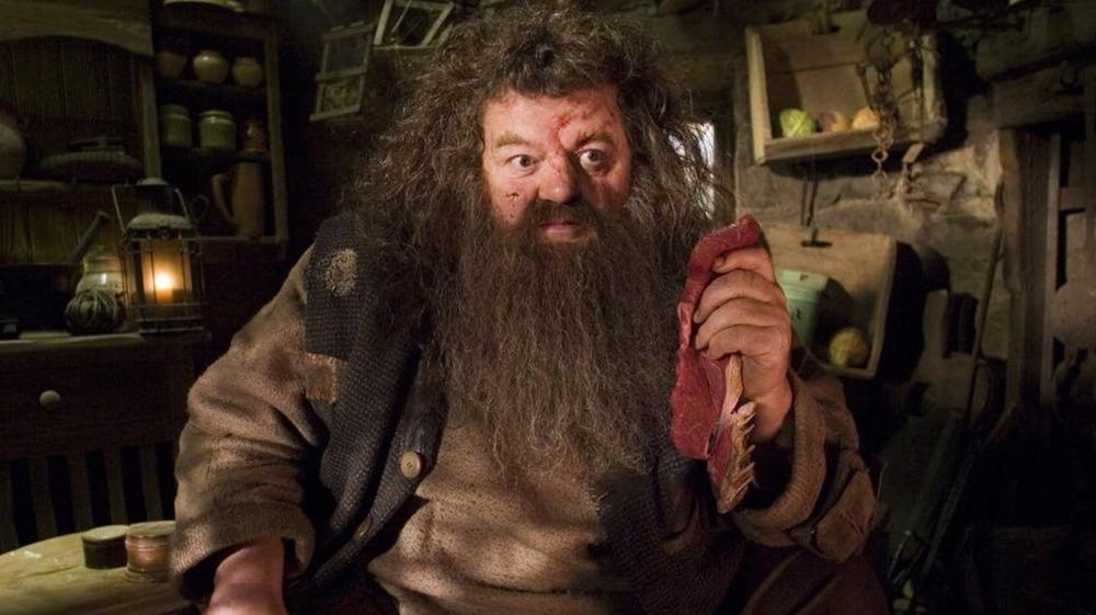 Robbie Coltrane as Rubeus Hagrid