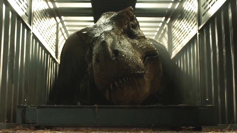 Roberta the T-Rex as the T-Rex in Jurassic World: Fallen Kingdom