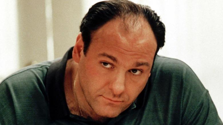 Tony Soprano looking intently