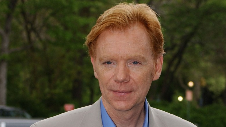 david caruso csidavid caruso 2019, david caruso jade, david caruso csi, david caruso net worth, david caruso interview, david caruso emotional intelligence, david caruso hockey, david caruso actor, david caruso csi miami, david caruso lives where, david caruso one liners, david caruso twitter, david caruso linkedin, david caruso, david caruso dead, david caruso age, david caruso wiki, david caruso house, david caruso sunglasses, david caruso young
