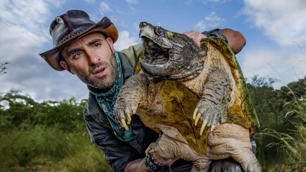 Coyote Peterson and a snapping turtle
