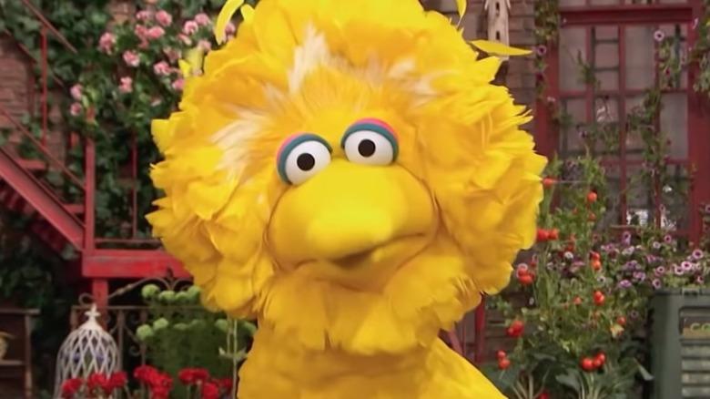 Sesame Street Big Bird Wonders
