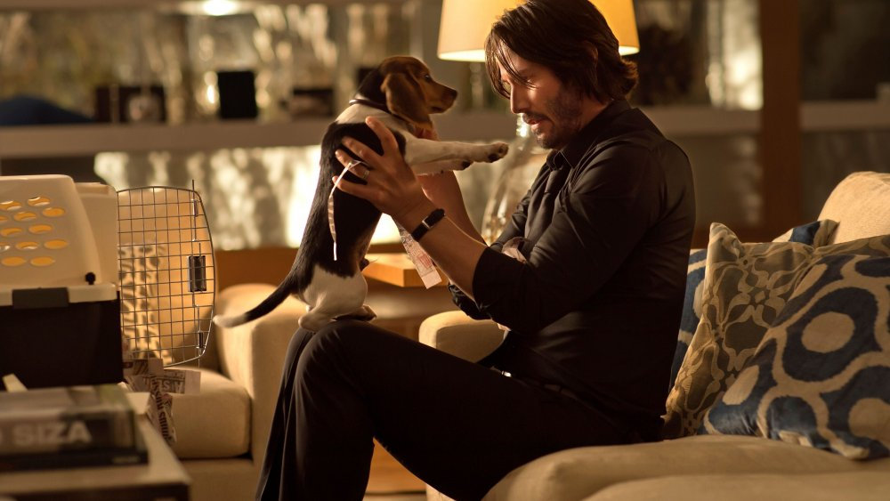 Keanu Reeves and a beagle puppy in John Wick
