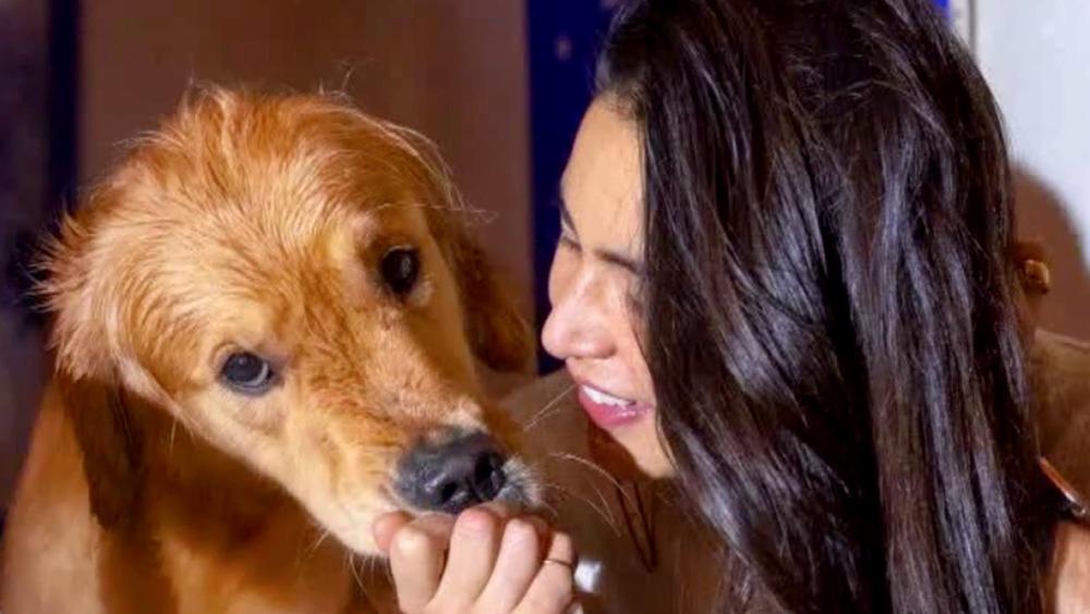 Carol pets Miso the golden retriever