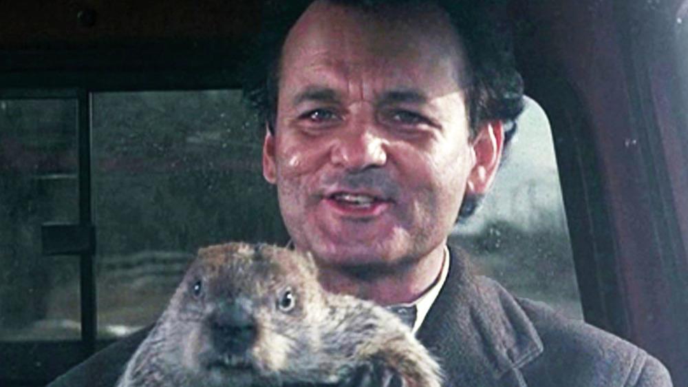Groundhog day Bill Murray and groundhog