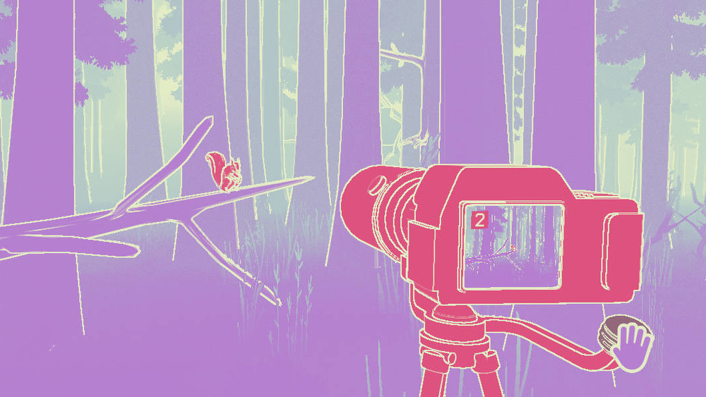 A red camera takes a picture of a squirrel in the woods