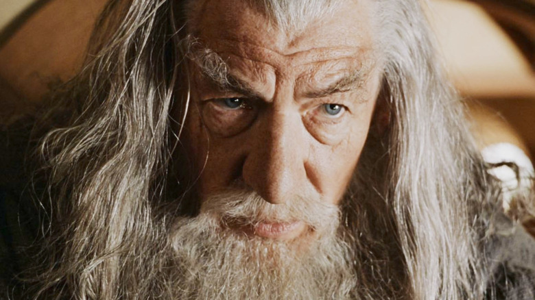 Gandalf in Fellowship of the Ring